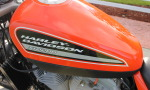 XR1200 SPOTRSTERS 066